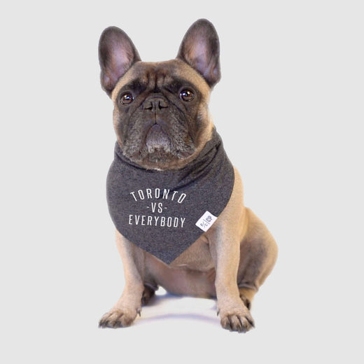 Toronto vs Everybody Dog Bandana, Canada Pooch Dog Bandana