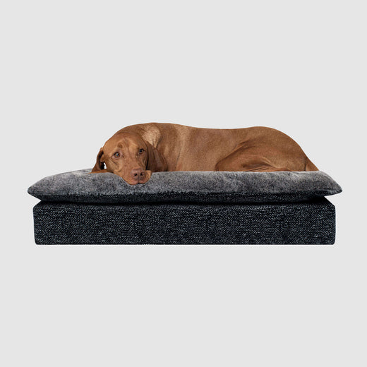 Mat Dog Bed in Carbon Black, Canada Pooch Pillow Topper Birch Bed
