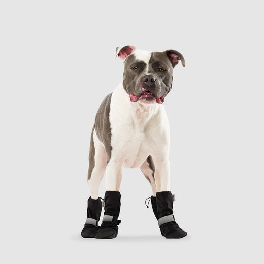 Soft Shield Dog Boots in black reflective, Canada Pooch, Dog Boot