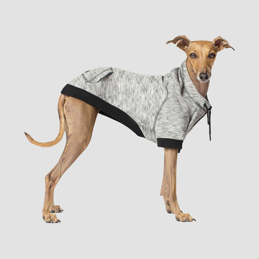 Spacedye Hero Dog Hoodie in Grey Mix, Canada Pooch Dog Sweater