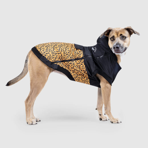 The 360 Dog Jacket in Leopard, Canada Pooch Dog Jacket