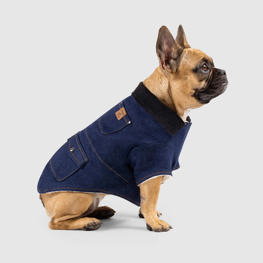 The Worker Dog Jacket in Blue Denim, Canada Pooch Dog Jacket