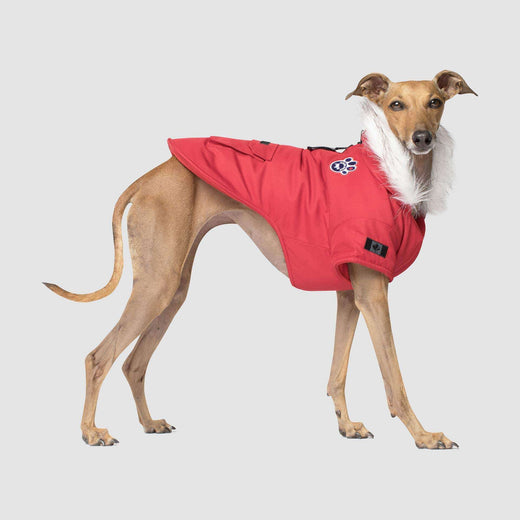 Winter Wilderness Dog Parka in Red, Canada Pooch Dog Parka