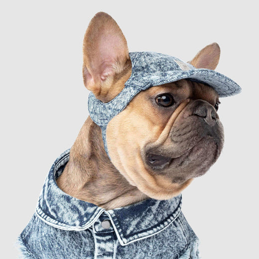 Dog Denim Comeback Cap, Canada Pooch Dog Hats