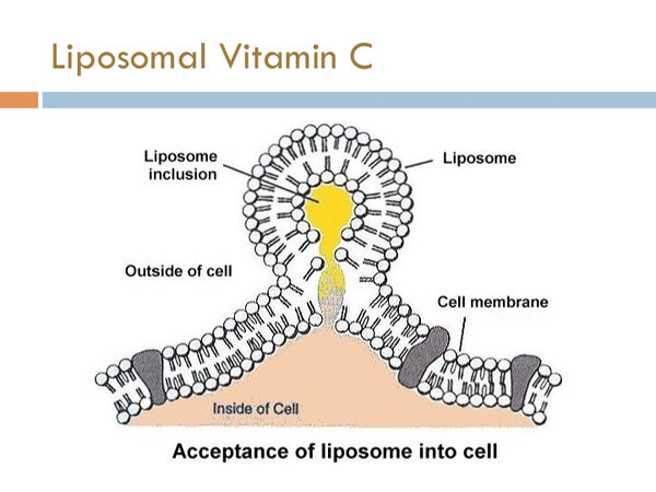 Liiposome injection into cells