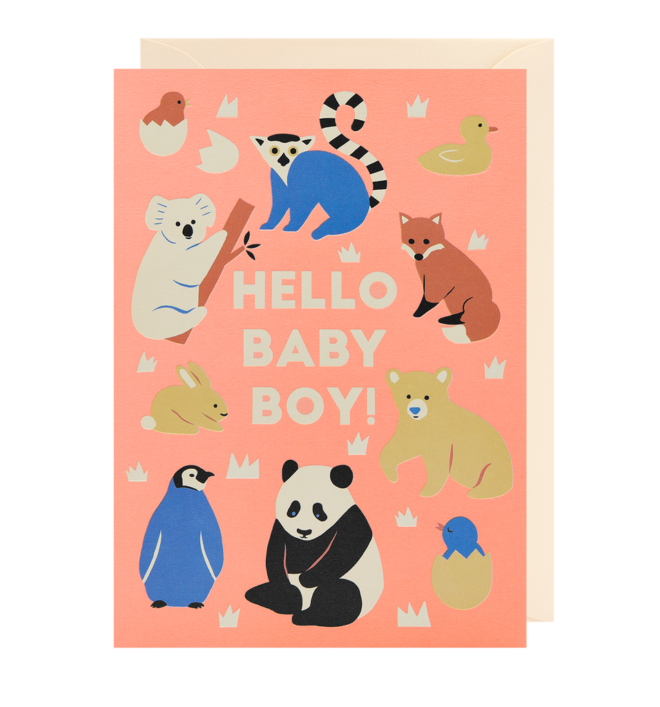 Hello Baby Boy! Greeting Card