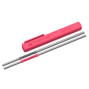 Re-usable Straws With Silicone Carry Holder