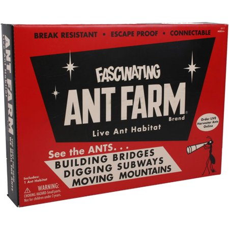 Fascinating Ant Farm Live Ant Habitat