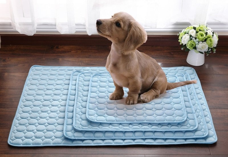 Dog cooling mat pad comes in 4 different sizes