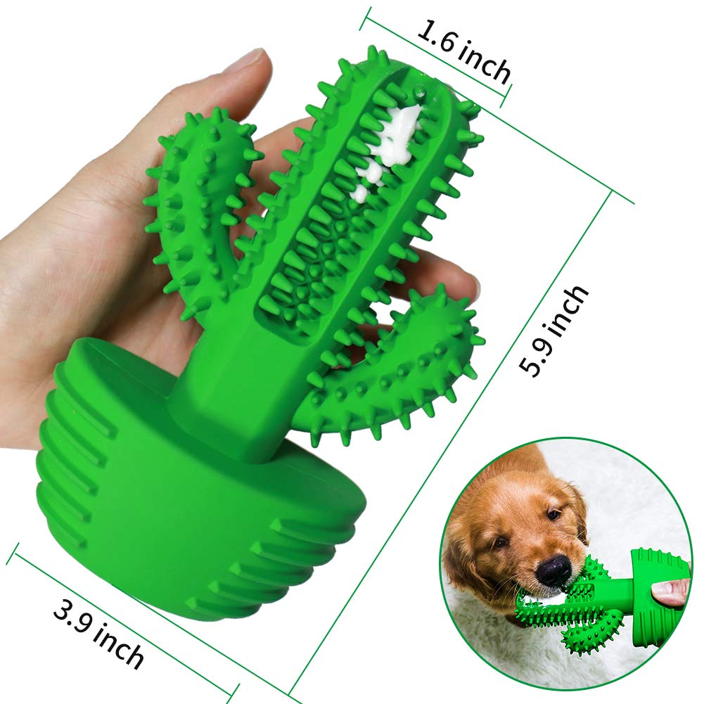 Dog Toothbrush Toy Cactus Dimensions