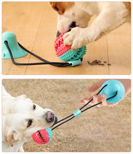 Dog tug toy toothbrush cleaning