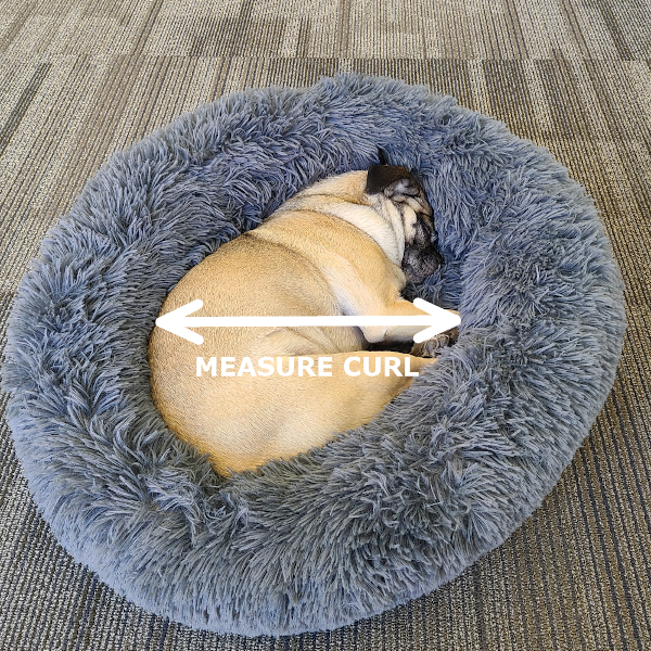 Make sure you measure your dog when they curl up for your dog bonds dog bed!