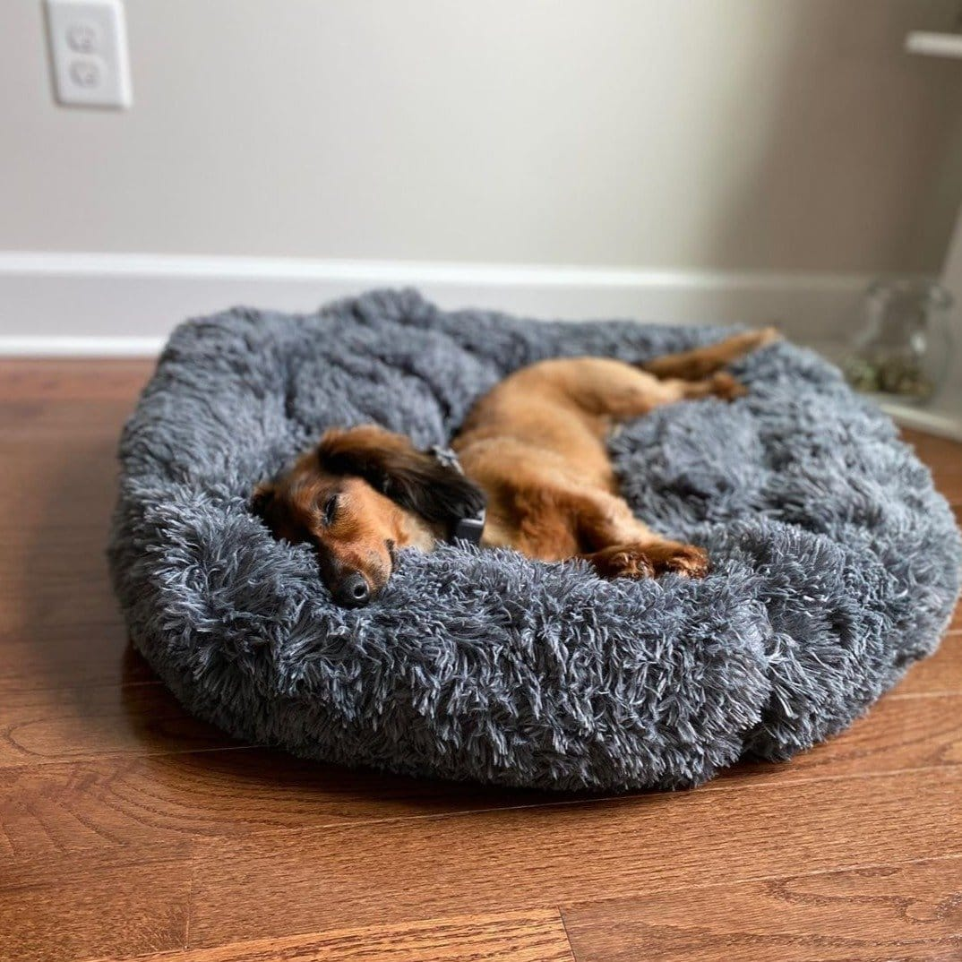 Soothing Calming Dog Pet Bed