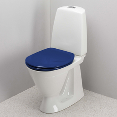 Image of Coloured Toilet Seat