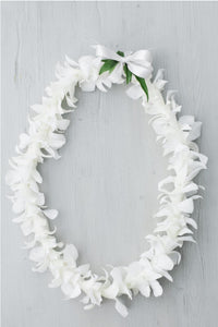 Double Orchid Lei - Tropical