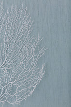 Load image into Gallery viewer, Sea Fan Coral