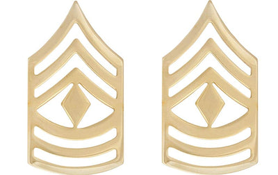 First Sergeant (1SG) Non-Subdued