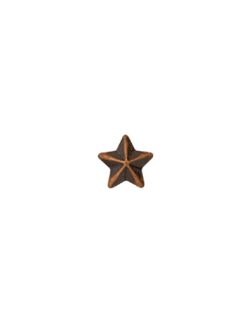 Ribbon Device Bronze Star