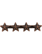 Ribbon Device Bronze Star-4