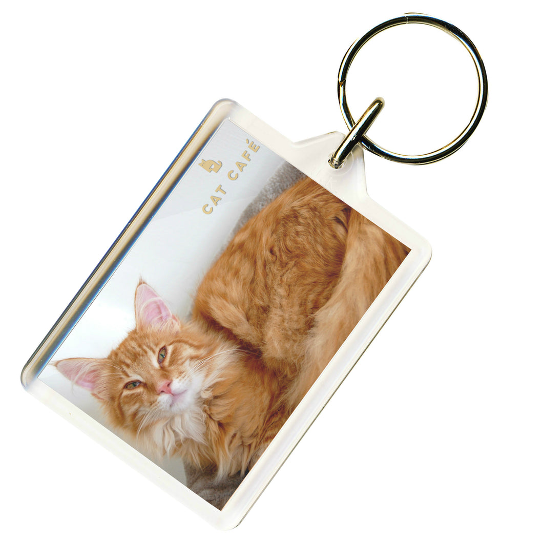 Cat Cafe Liverpool - Rupert Keyring