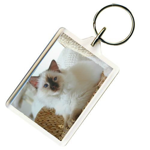 Cat Cafe Liverpool - Max Keyring
