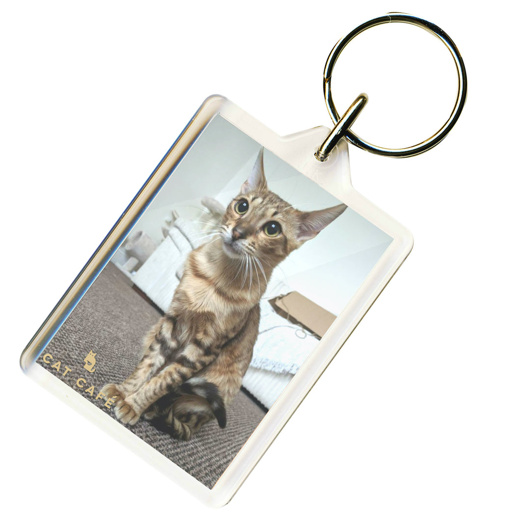 Cat Cafe Liverpool - Ringo Keyring