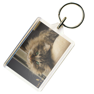Cat Cafe Manchester - Georgie Keyring