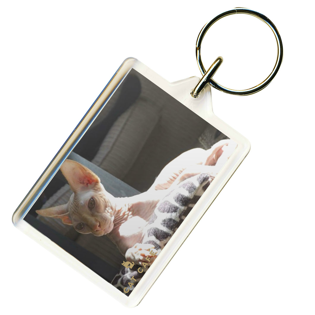 Cat Cafe Liverpool - Dobbie Keyring