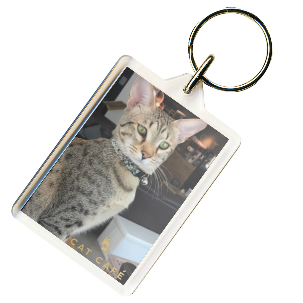 Cat Cafe Manchester - Savannah Keyring