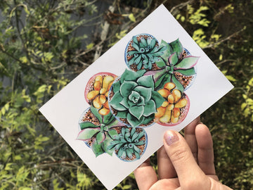 Succulents Print Postcard Set