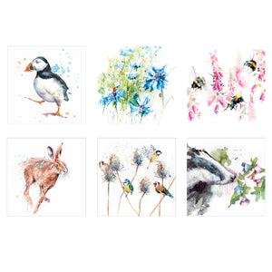 Watercolour wildlife set of 6 greeting cards