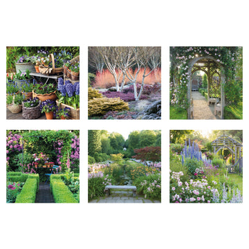 Garden Delights set of 6 greeting cards