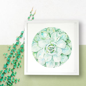 Green Succulent Limited Edition Print