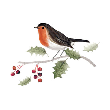 Robin - Christmas card