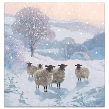 Winter woolies - Welsh/English bilingual - pack of 10 Christmas cards with envelopes