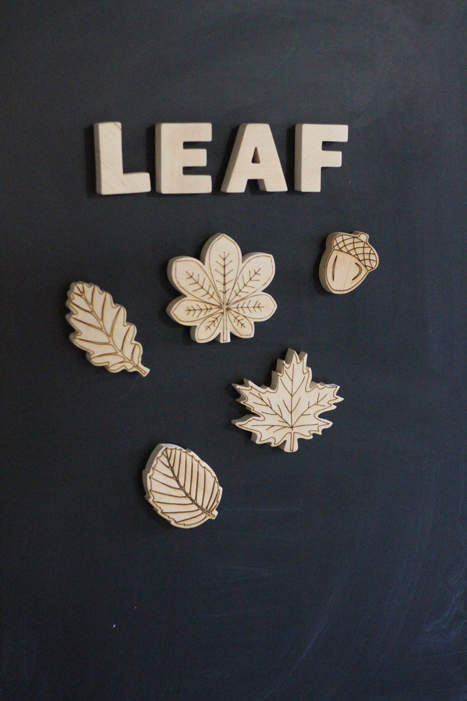 Magnetic Leafs