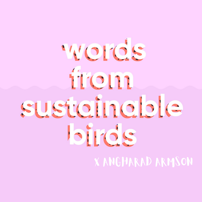 Words from Sustainable Birds x Angharad Armson