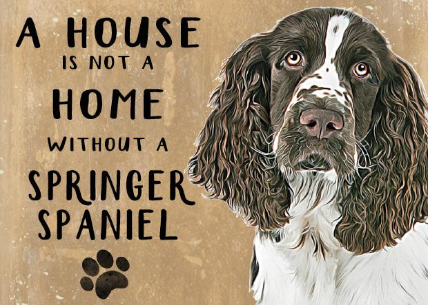 20cm metal 'A House is not a Home without a Springer Spaniel' hanging sign Spaniel lover gift