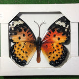 Large 35cm bright Orange metal Butterfly garden ornament wall art decoration
