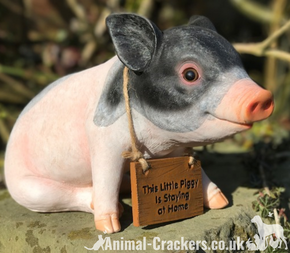 Cute piglet with 'This Little Piggy Staying at Home' removable sign, indoor or outdoor ornament