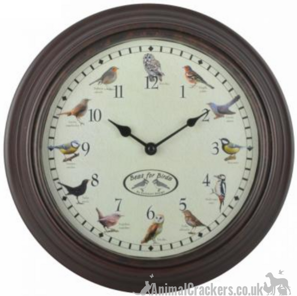 BIRD SONG CHIMING WALL CLOCK with quirky hourly birdsong chime, great garden bird lover gift, boxed