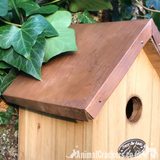 Copper Roof BLUE TIT Bird house nest box chunky wood garden bird lover gift