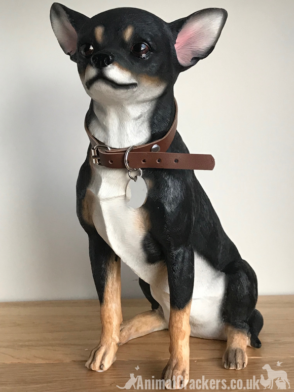 Extra large 25cm Black & Tan Chihuahua figurine, quality lifelike ornament from Leonardo