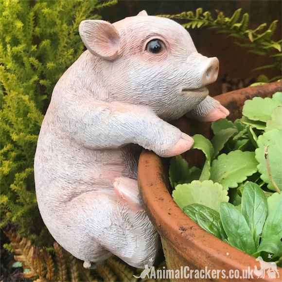 CUTE PIGLET POT HANGER novelty resin garden ornament, great Pig lover gift