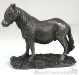 Quality cold cast bronze Shetland Pony ornament figurine horse lover gift, boxed