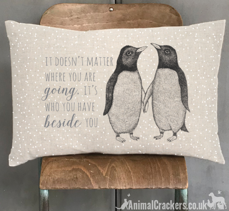 'Its who you have beside you' cute Penguin design cushion from East of India, Penguin lover gift