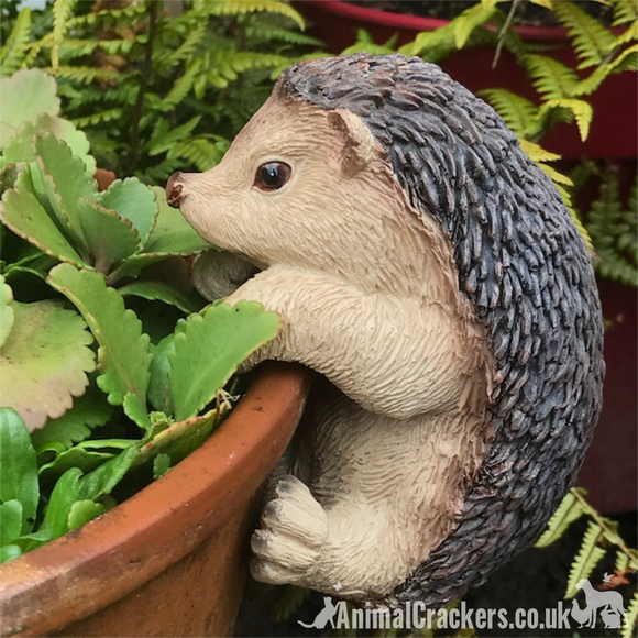 CUTE HEDGEHOG POT HANGER novelty resin garden ornament, great Hedgehog lover gift