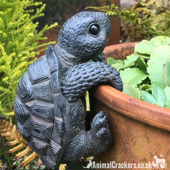 TORTOISE POT HANGER novelty resin garden ornament, great reptile lover gift