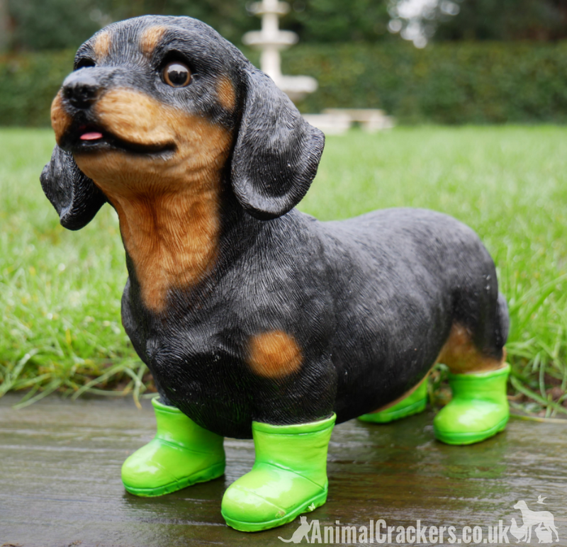 Dachshund in bright green Wellington Boots indoor or garden ornament, great Sausage Dog lover gift