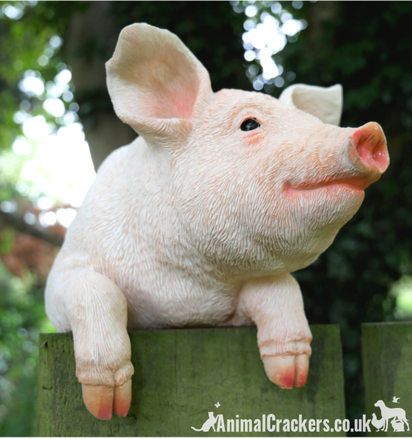 Fence Hanging Pig ornament sculpture, novelty garden decoration, Pig lover gift